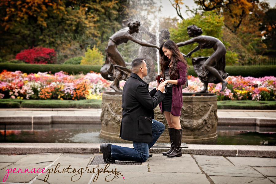 planning to propose in nyc this holiday season have it photographed