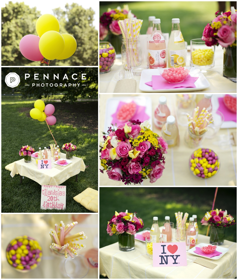 tillandsia s surprise birthday picnic in central park teasers