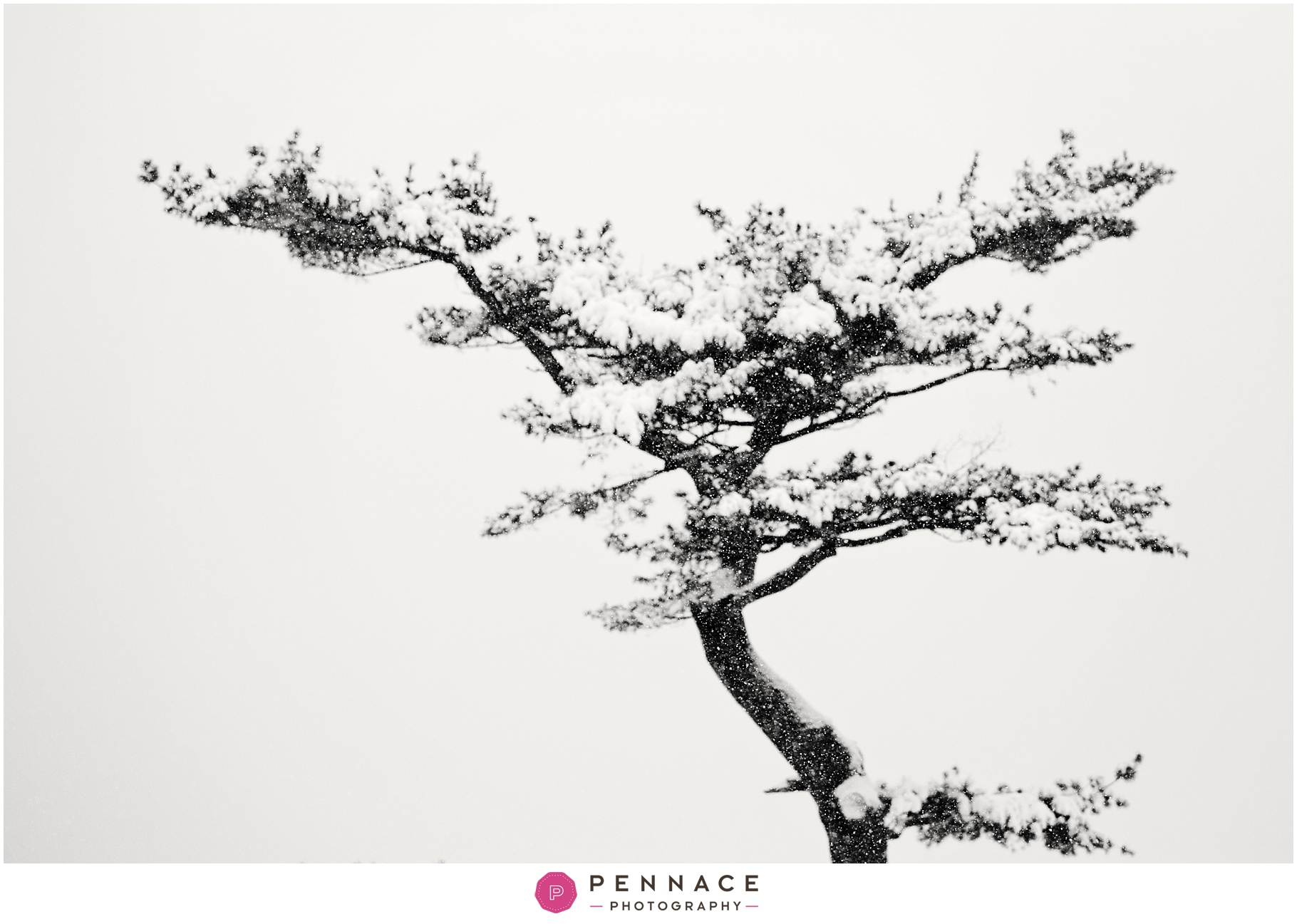Abstract Snow Photo