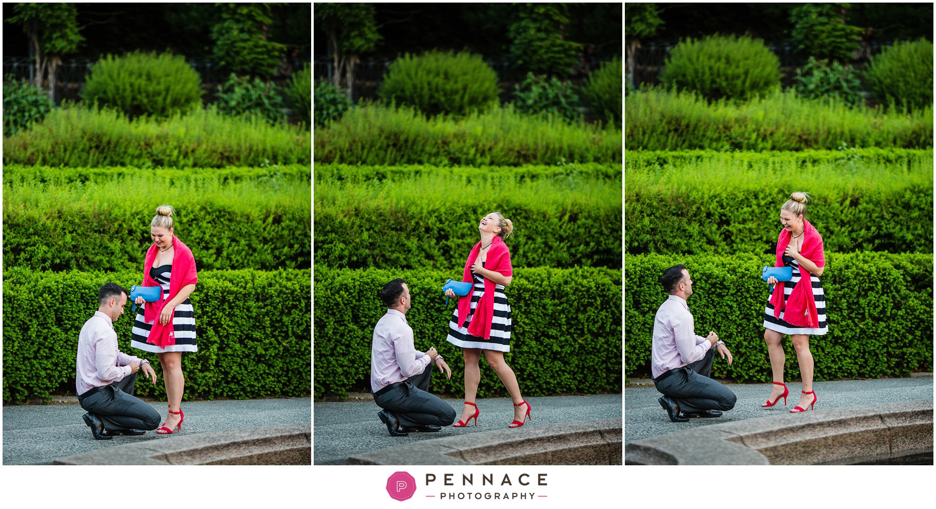 Surprise Marriage Proposal in Conservatory Garden Loy David