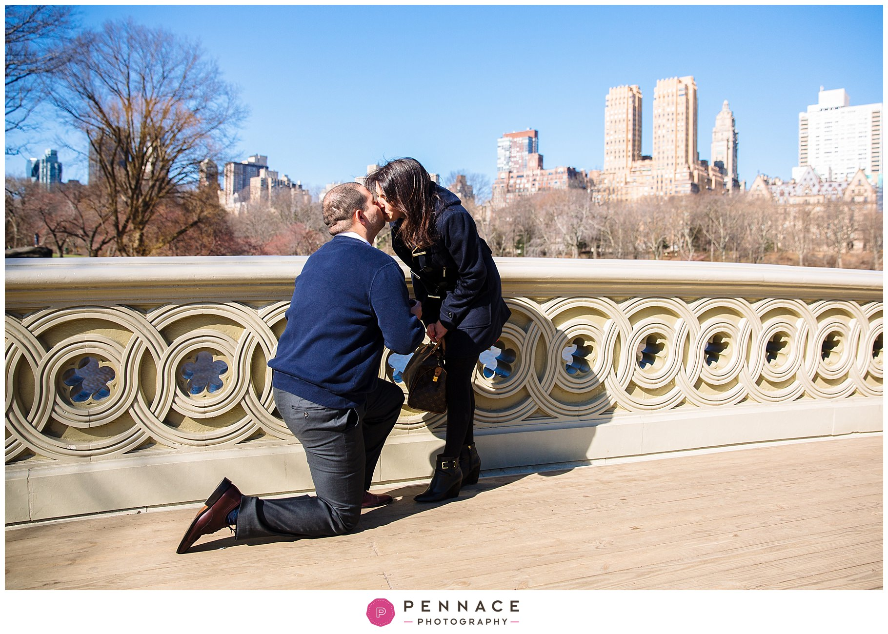 Central Park Marriage Proposal