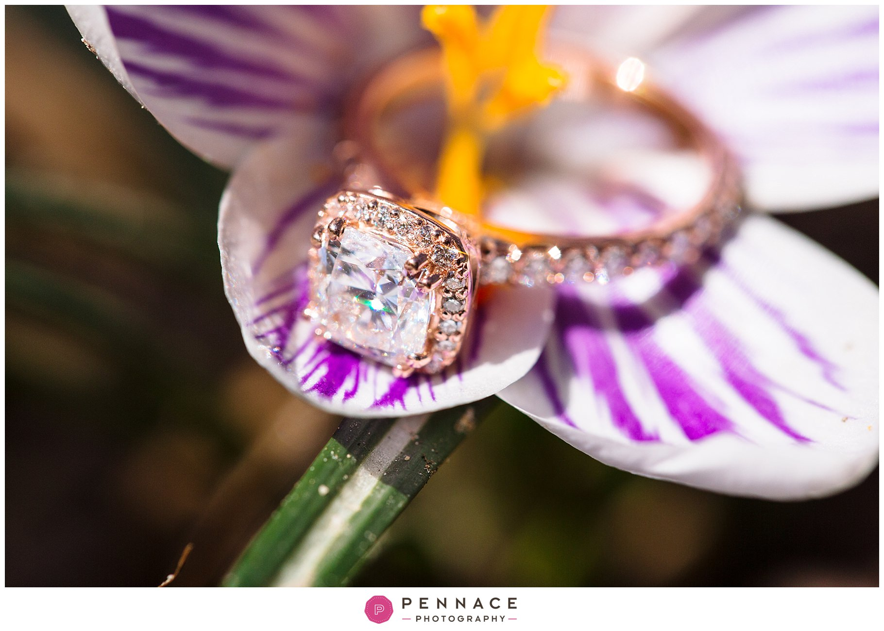 halo engagement ring with rose gold
